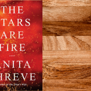Review of The Stars Are Fire by Anita Shreve