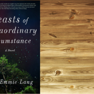 Review: Beasts of Extraordinary Circumstance by Ruth Emmie Lang