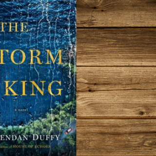 Mini Review: The Storm King by Brendan Duffy