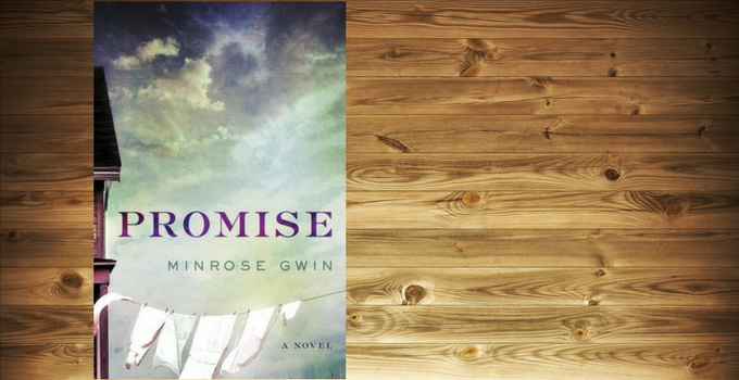 Blog Tour Review: Promise by Minrose Gwin