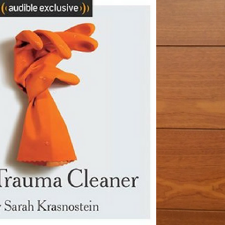 Audiobook Review: The Trauma Cleaner