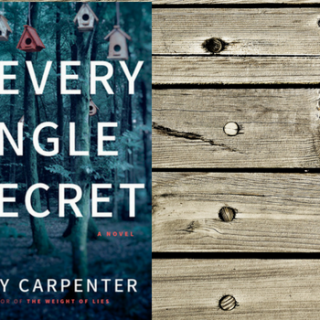 Review: Every Single Secret by Emily Carpenter