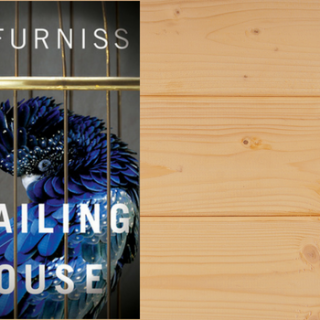 Blog Tour and Giveaway: The Trailing Spouse by Jo Furniss